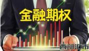 金融期权,详细分析金融期权交易风险